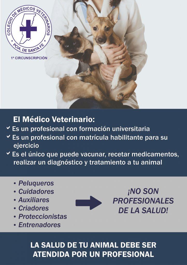 afiche_profesional_8